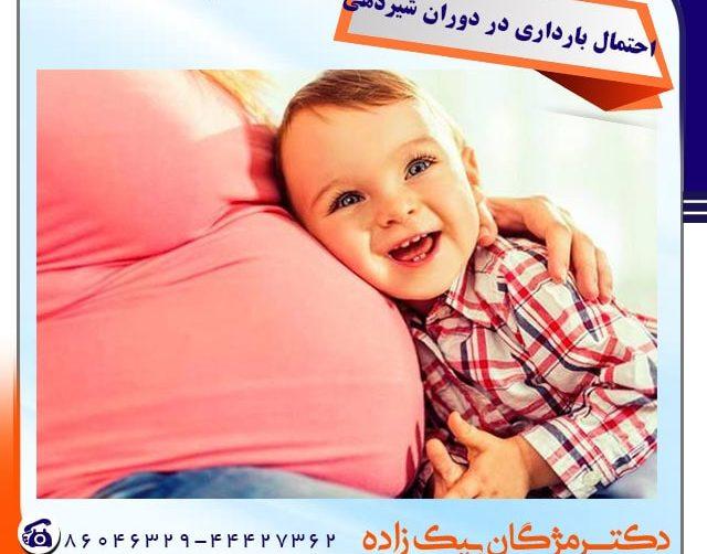 احتمال بارداری در دوران شیردهی